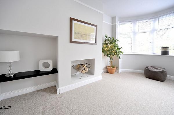 Carpet for a living room image