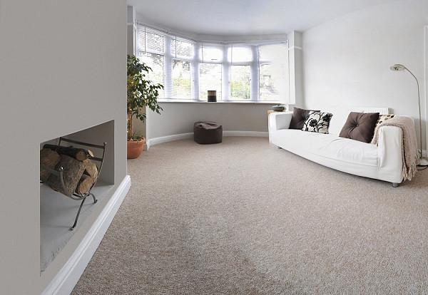Carpet for a living room